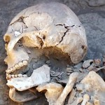 Pic shows: The remains found.  The remains of an ancient female warrior have been discovered in South Kazakhstan proving for the first time it was not just men who were soldiers.  The perfectly preserved skeleton was found with a huge sword and dagger and archaeologists believe the woman lived in the period between 11 century BC and IV century AD .  Previously, no records have ever been found of woman warriors in the area and experts  believe she was a citizen of importance living in the ancient Kanguy state.  She probably led a group of nomads who lived somewhere in the area of modern Kazakhstan . Scientists discovered the sex of the human remains by closely examining the skull which they say is typically female.   Researchers also found some ancient arrows, a small knife placed close to the right hand of the female warrior and a sword placed close to her left hand indicating that the person was a renown warrior. Also buried with her were a number of pots and bowls which showed that the person was both wealthy and important.   The major find is one of the most notable ever made after 23 years of research in the area.   The items will be soon be  exhibited in the National Museum of Kazakhstan while scientists continue their work in the region.  (starts)