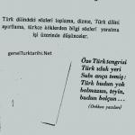 turk-dili-icin