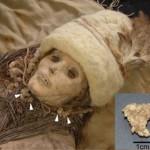 Boynunda peynir parçaları bulunan bir mumya (Görsel: Y.Liu and Y.Yang)